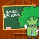 Обложка канала @brokoledu